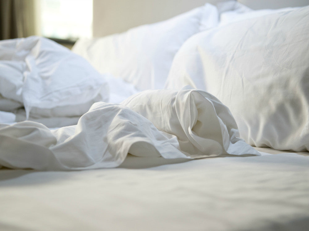 Cotton U0026 Care Made In USA White Sheets ...