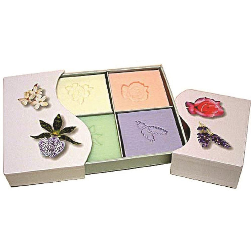 Clover Fields Floral Box 4 Pack