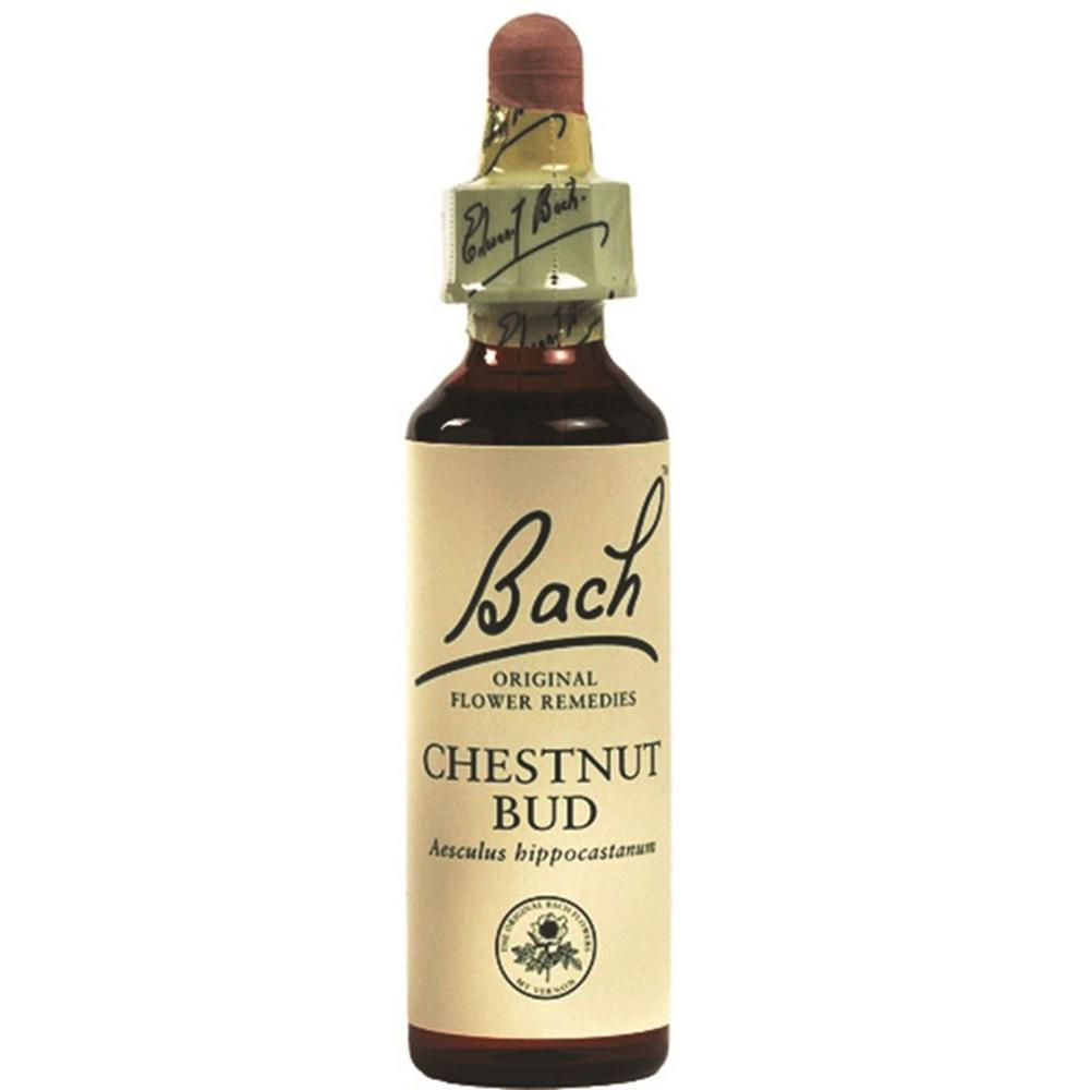 Martin & Pleasance Bach Flower Remedies Chestnut Bud 10ml
