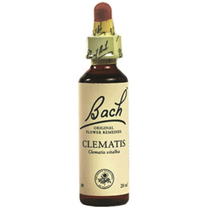 Martin & Pleasance Bach Flower Remedies Clematis 10ml