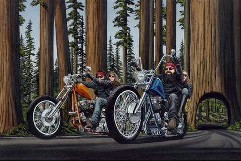 Riding the Redwoods