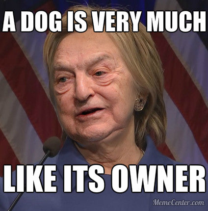 A dog is very much like its owner #Soros #Hillary #Hilldawg