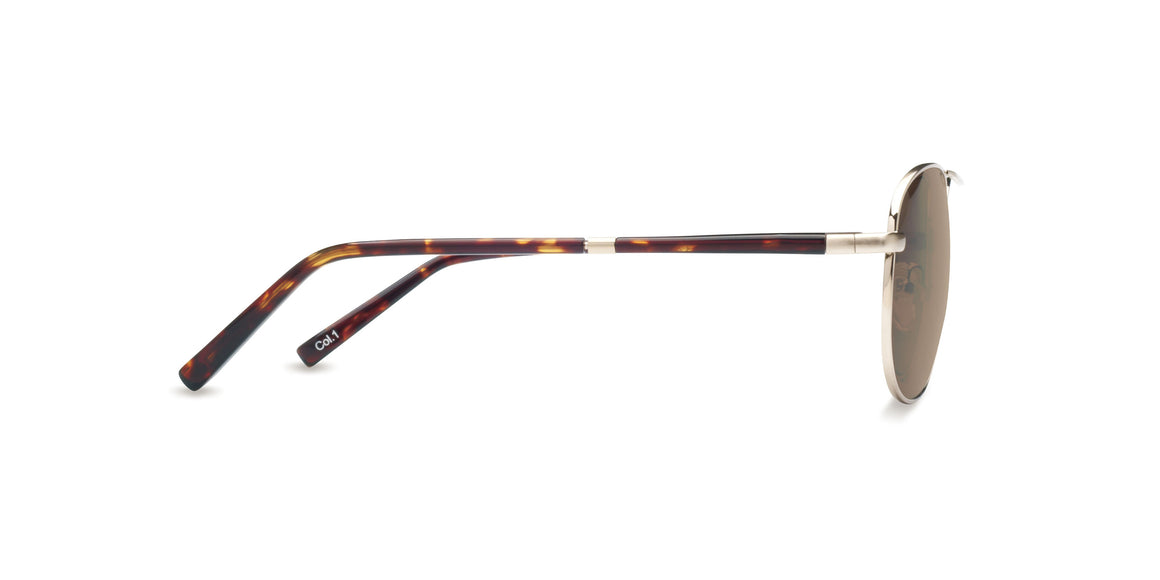 Aloha - Gold Brush - TSun Optica - Sunglasses