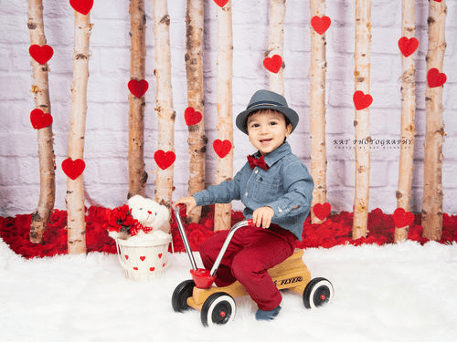 Katebackdrop:Kate Valentine's Day Roses Wooden Stick Backdrop Designed by Jia Chan Photography