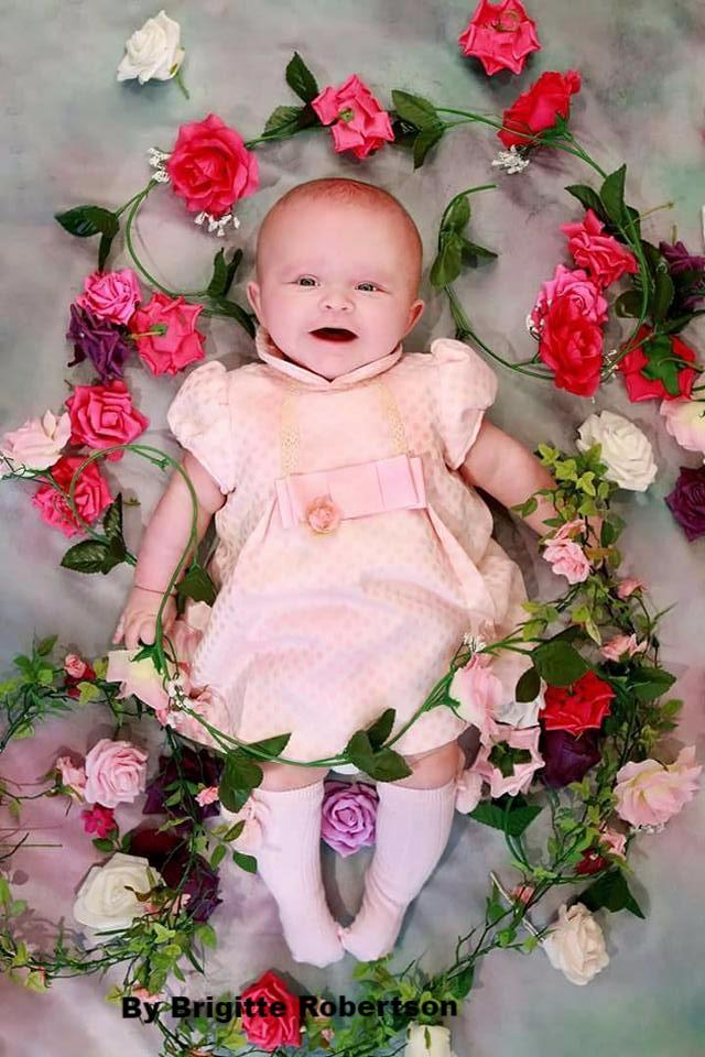 Load image into Gallery viewer, Katebackdrop:Kate Pink Flowers Hand Painting Portrait Photography Backdrops US