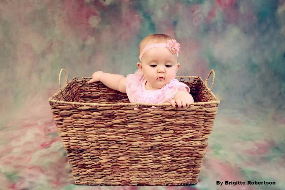 Katebackdrop:Kate Pink Flowers Hand Painting Portrait Photography Backdrops US