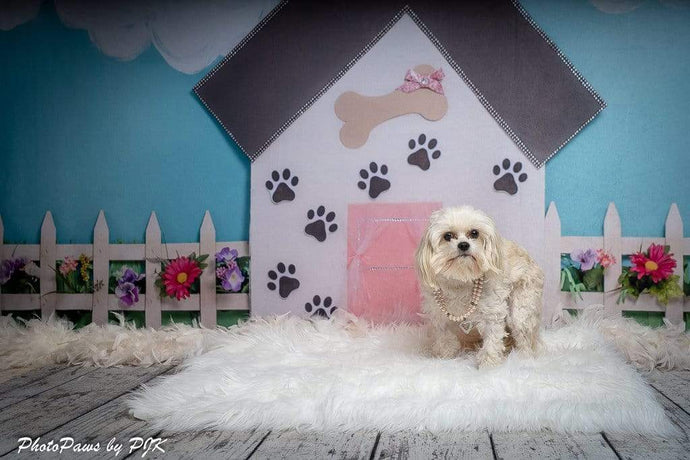 Katebackdrop:Kate Pet Park Flower Spring Children Backdrop for Photography Designed by Erin Larkins