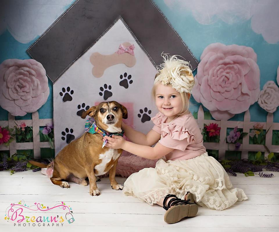 Load image into Gallery viewer, Katebackdrop£ºKate Pet Park Railing with flowers Spring Children Backdrop for Photography Designed by Erin Larkins