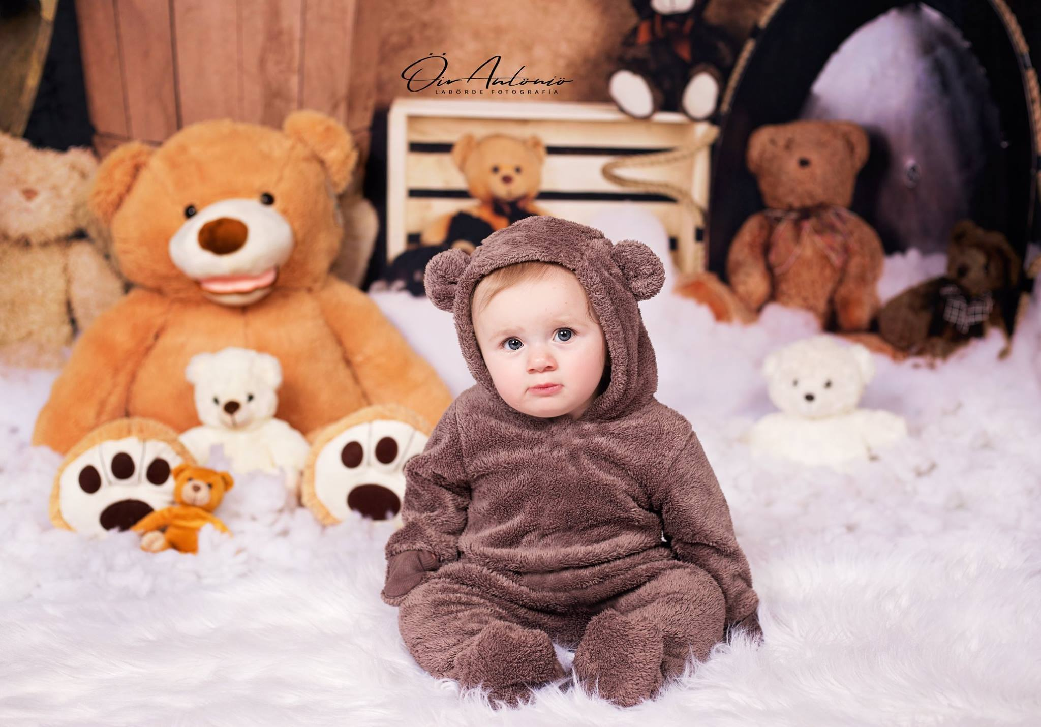 Load image into Gallery viewer, Katebackdrop:Kate Teddies in Dreamland Backdrop for Photography Designed by Amanda Moffatt