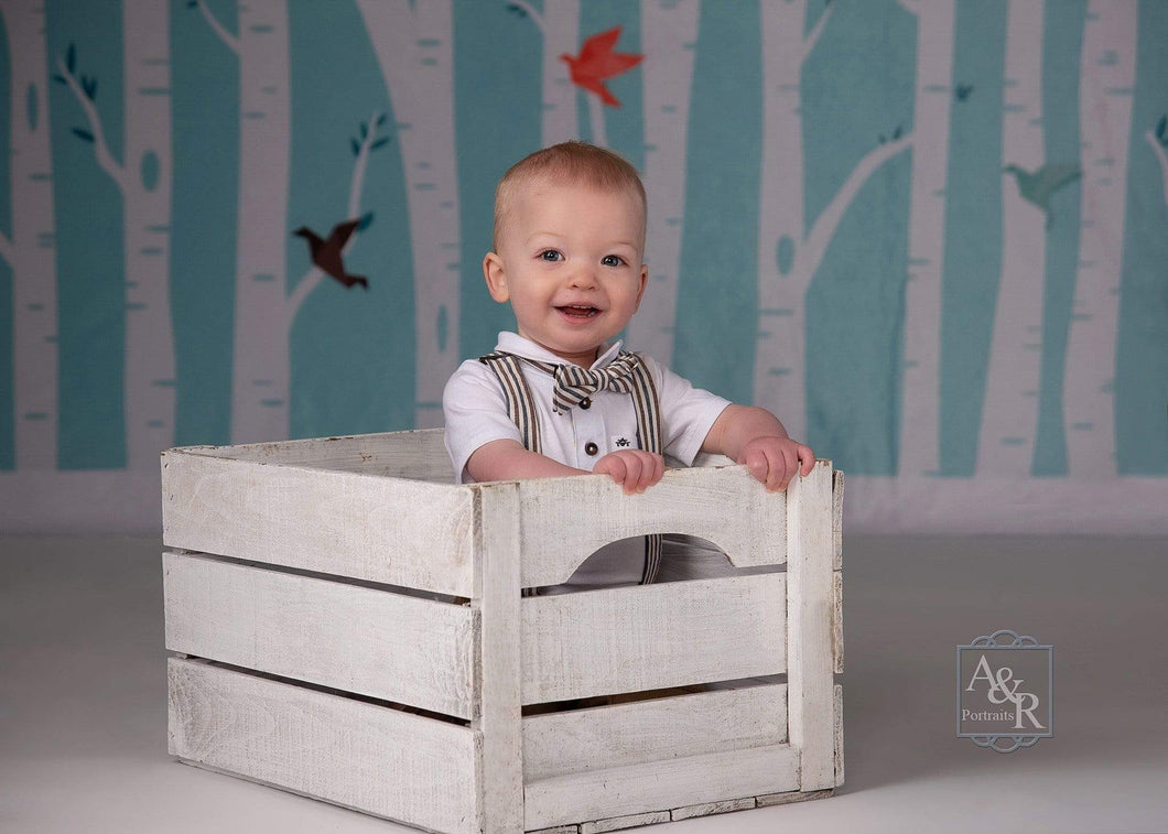 Katebackdrop£ºKate Origami Birds in Birch Forest Backdrop for Photography Designed by Amanda Moffatt