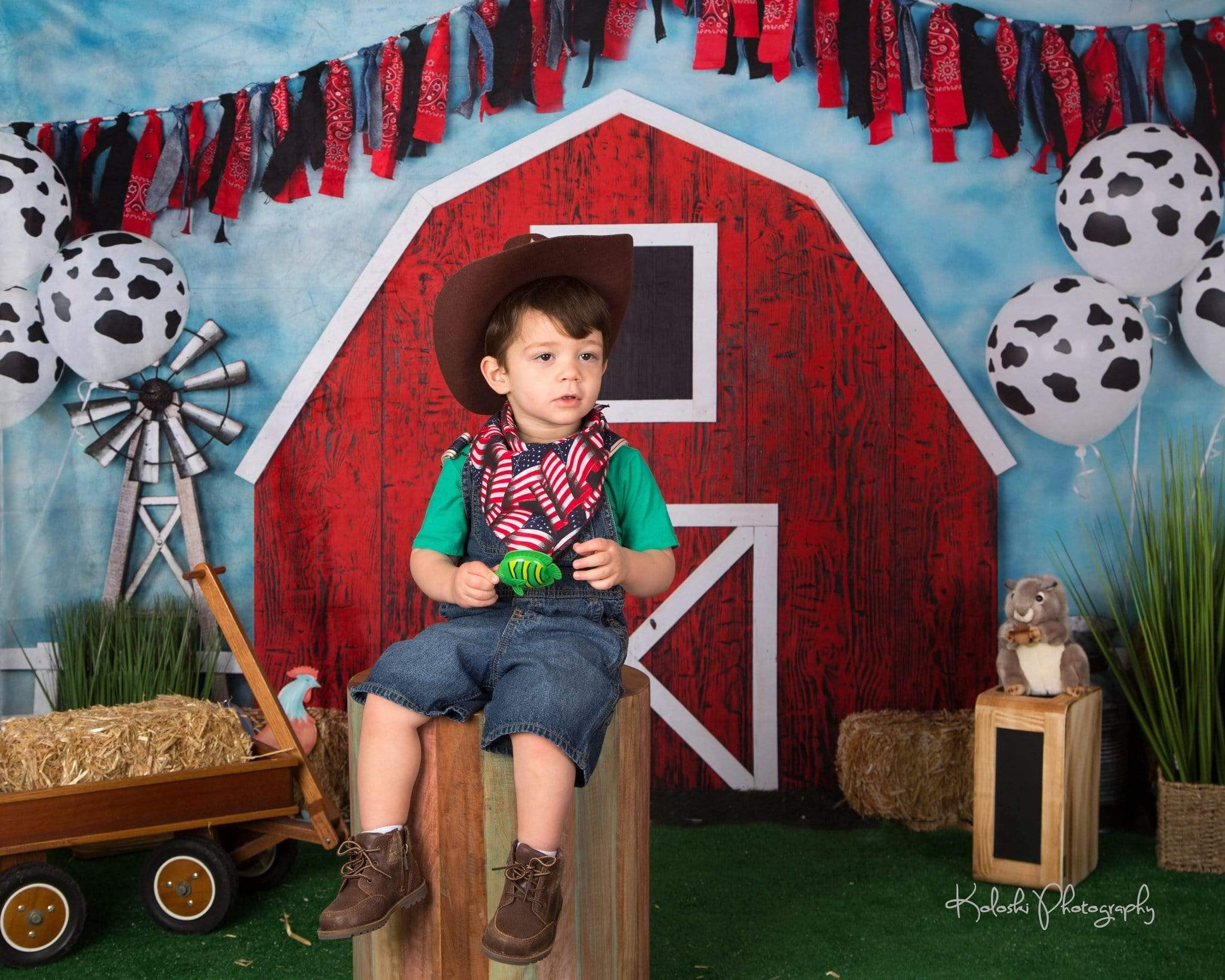 Load image into Gallery viewer, Katebackdrop£ºKate Barnyard Fun Balloons Children Backdrops Designed by Arica Kirby