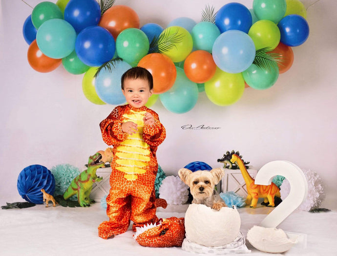 Katebackdrop£ºKate Dinosaur Birthday with Balloons Backdrop for Photography Designed By Mandy Ringe Photography