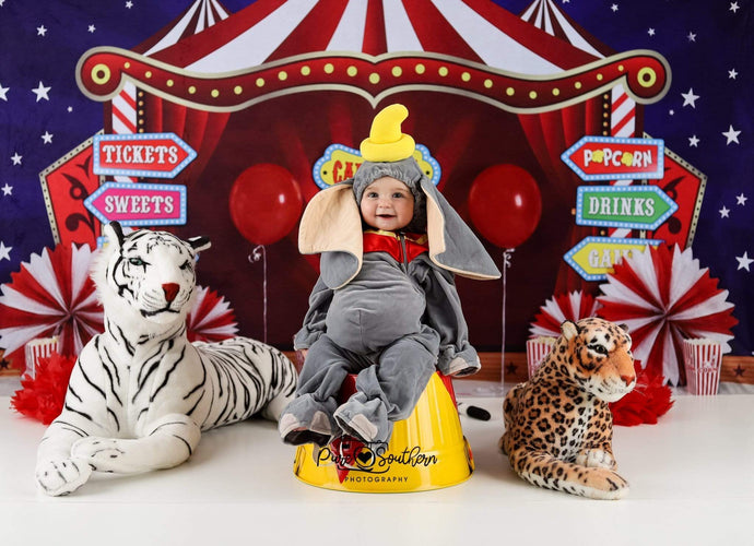 Kate Cake Smash Carnival Backdrop for Photography Designed By Sherie Skelly