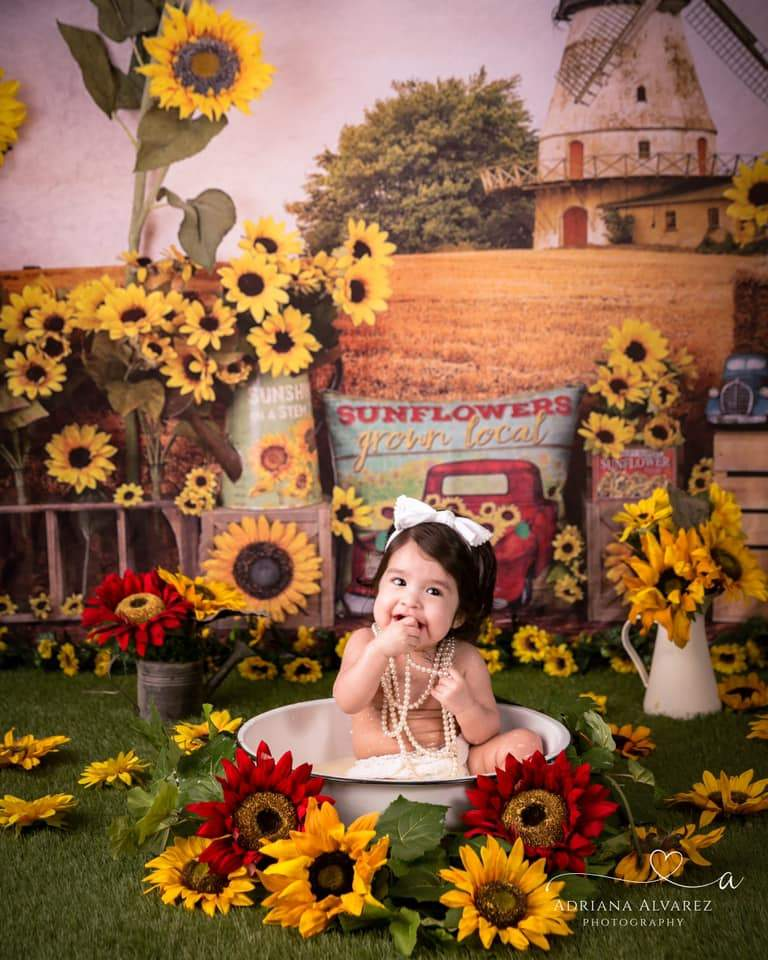 Load image into Gallery viewer, Katebackdrop£ºKate Sunflower Fall Farm Field Backdrop for Photography