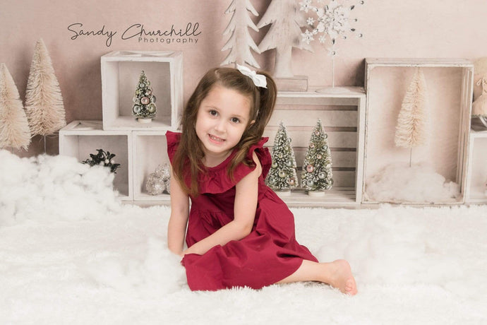 Kate Elegant Christmas Winter Display Backdrop for Photography Designed By Mandy Ringe Photography