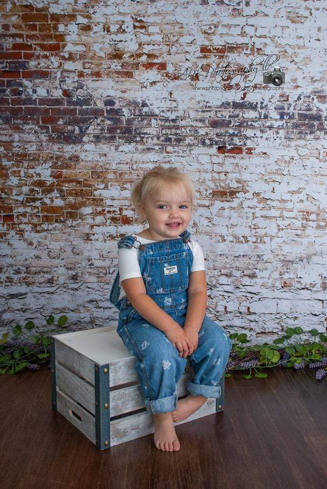 Load image into Gallery viewer, Katebackdrop£ºKate Crumbling White and Red Brick Wall Backdrops Designed by Arica Kirby