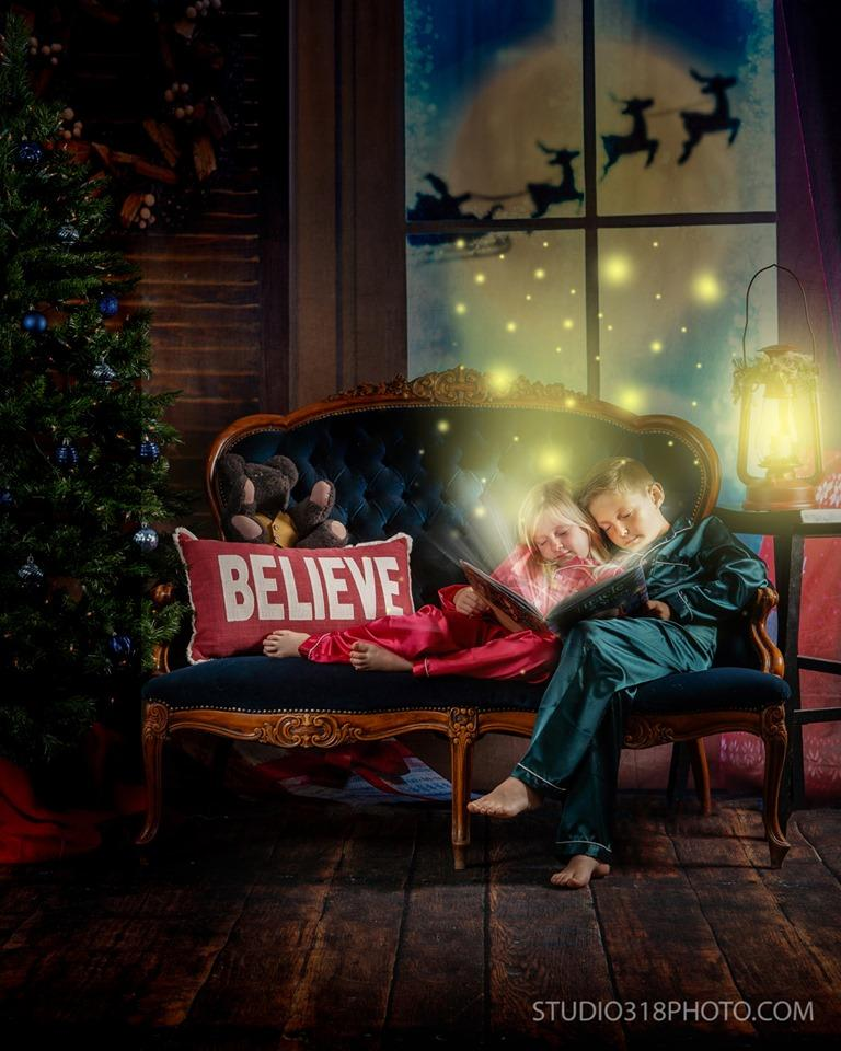 Load image into Gallery viewer, Katebackdrop:Kate Christmas Moon And Reindeer Outside Window Backdrops for Photography
