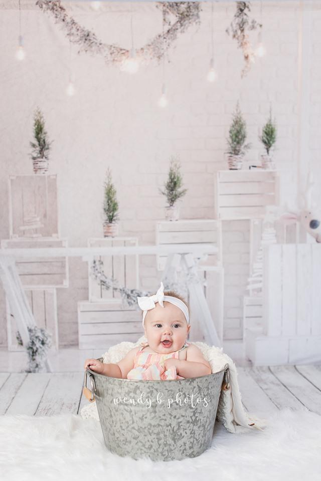 Load image into Gallery viewer, Katebackdrop£ºKate Christmas White Room with Potted Plant Decorations Backdrop