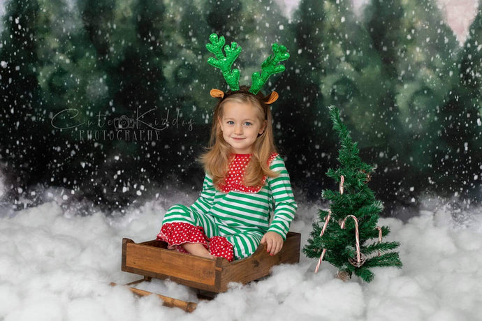 Katebackdrop:Kate Dazzling Winter Snowy Forest Backdrop for Photography Designed by Modest Brushes