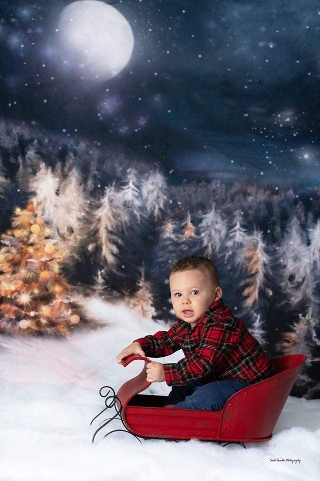 Load image into Gallery viewer, Katebackdrop£ºKate Winter Dream Christmas Night Trees Backdrop for Photography Designed By Jerry_Sina