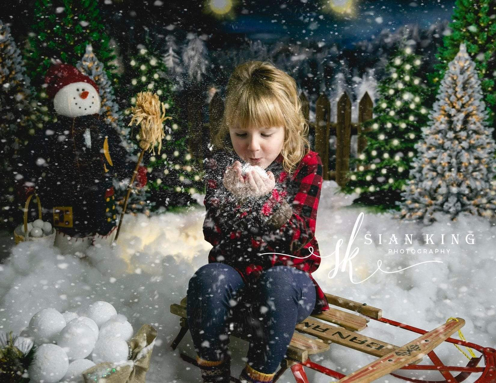 Load image into Gallery viewer, Katebackdrop£ºKate Christmas Night Pine Trees Farm Backdrop Designed By Jerry_Sina