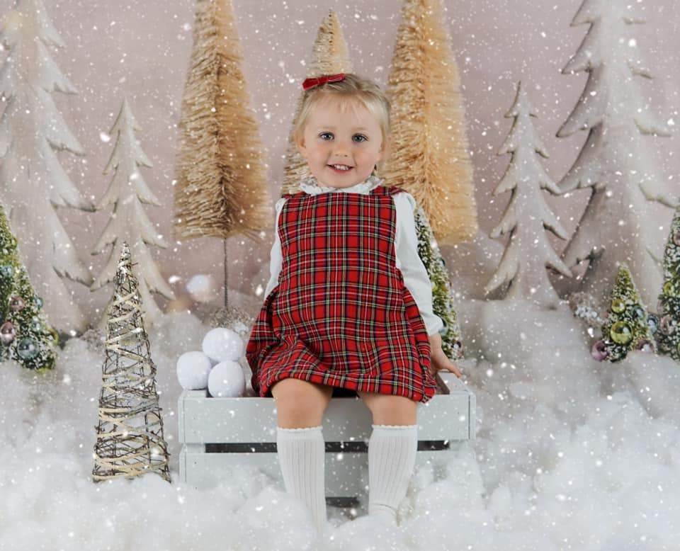 Load image into Gallery viewer, Kate Elegant Christmas Trees Backdrop for Photography Designed By Mandy Ringe Photography
