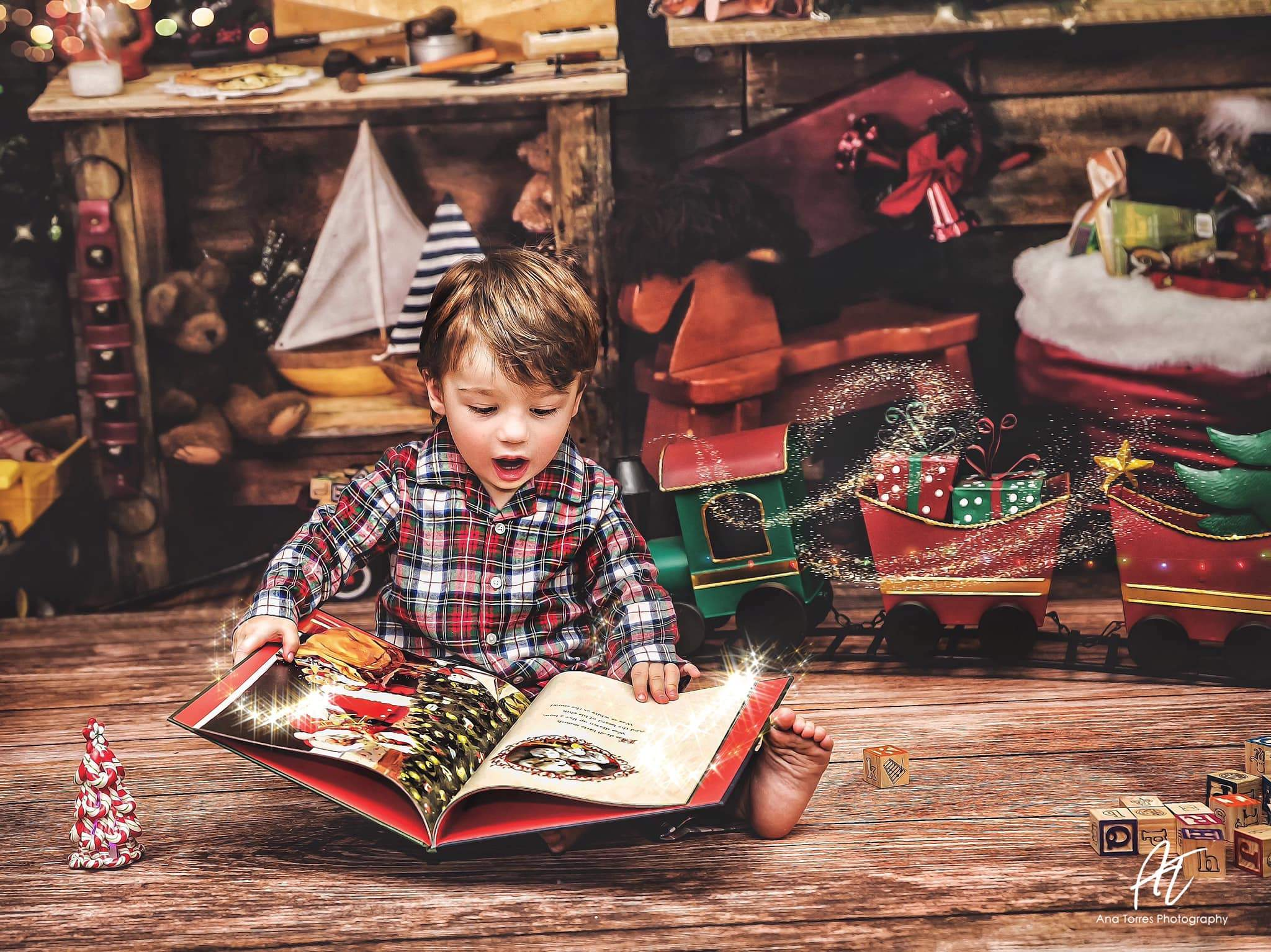 Load image into Gallery viewer, Kate Christmas Santas Workshop Backdrop designed by Arica Kirby