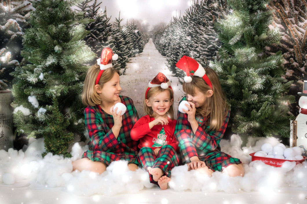 Katebackdrop:Kate Christmas Pines Tree Farm Path Backdrop for Photography