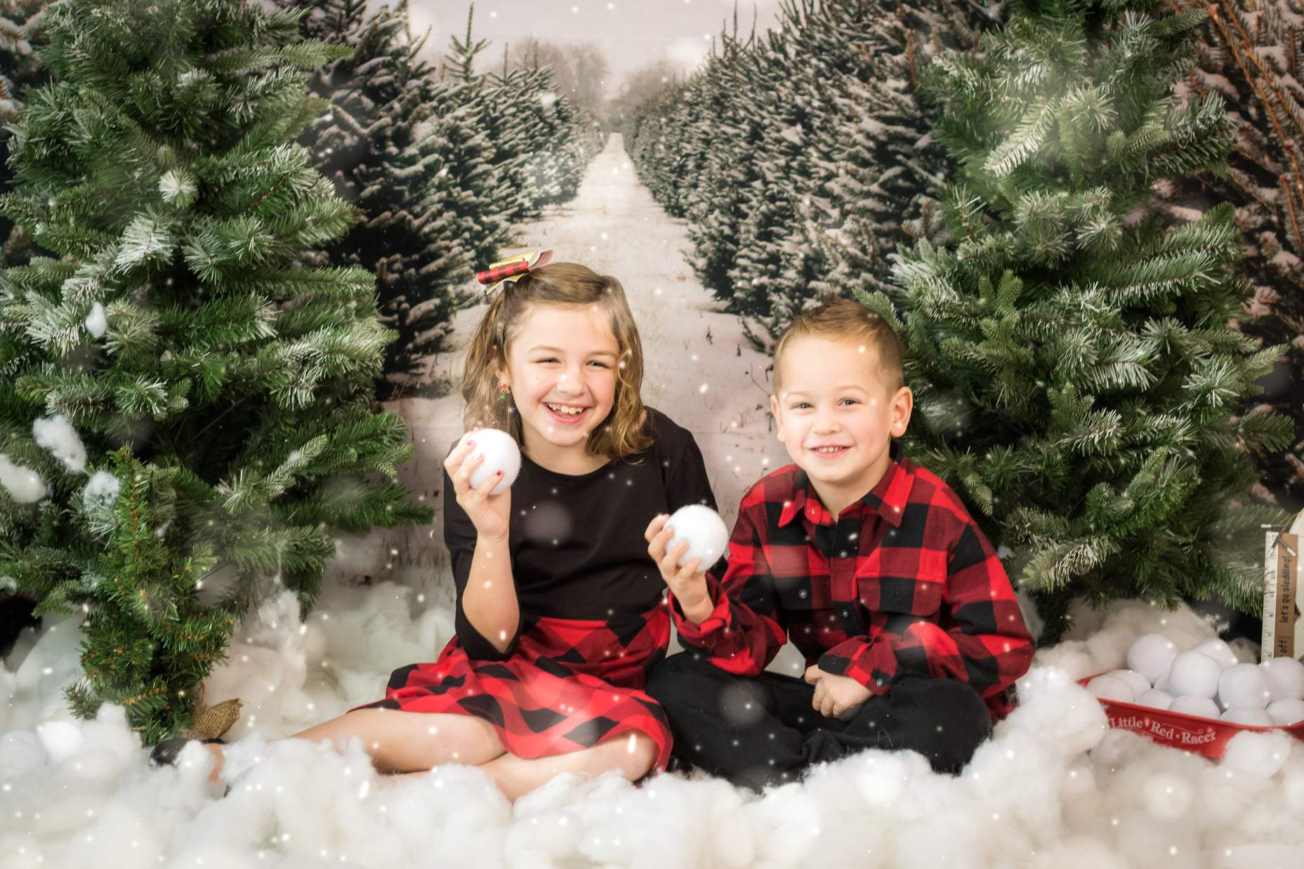 Load image into Gallery viewer, Katebackdrop£ºKate Christmas Pines Tree Farm Path Backdrop for Photography