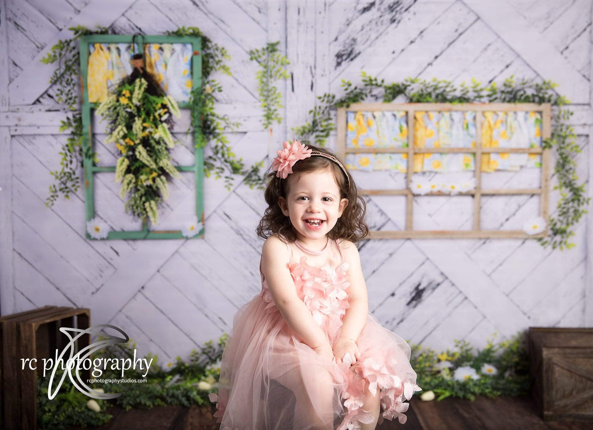 Load image into Gallery viewer, Katebackdrop£ºKate Retro Wood Lemon color and Daisies  Spring Backdrop