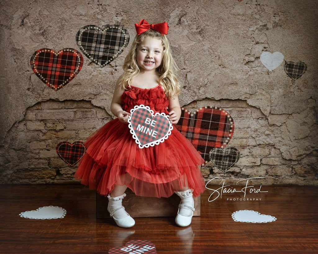 Kate Valentine's Day Love Heart Damaged Wall Backdrop for Photography Designed by JFCC