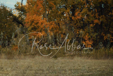 Kate Fall's Foliage  Backdrop for Children and Family Photography Designed By Rose Abbas