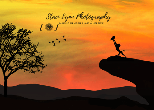 Katebackdrop£ºKate African Sunset Backdrop for Photography Designed By Stacilynnphotography