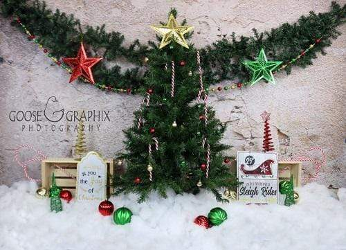 Kate Christmas Snowy Pine Trees Star Decoration Backdrop for Photography Designed By Amanda Moffatt