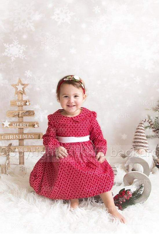Load image into Gallery viewer, Katebackdrop:Kate Sliver star snowflake Background Children Holiday Christmas Photography Backdrop