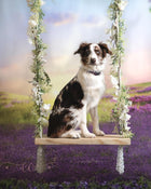 Kate Outdoor Purple Flowers Scenery Lavender Backdrop