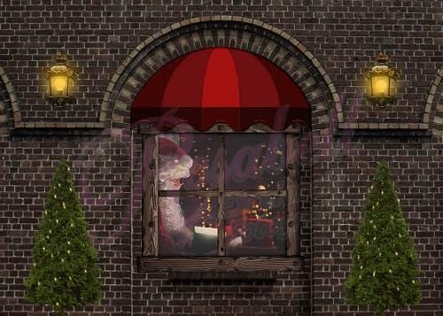 Kate Christmas Window Backdrop Designed by Rosabell Photography