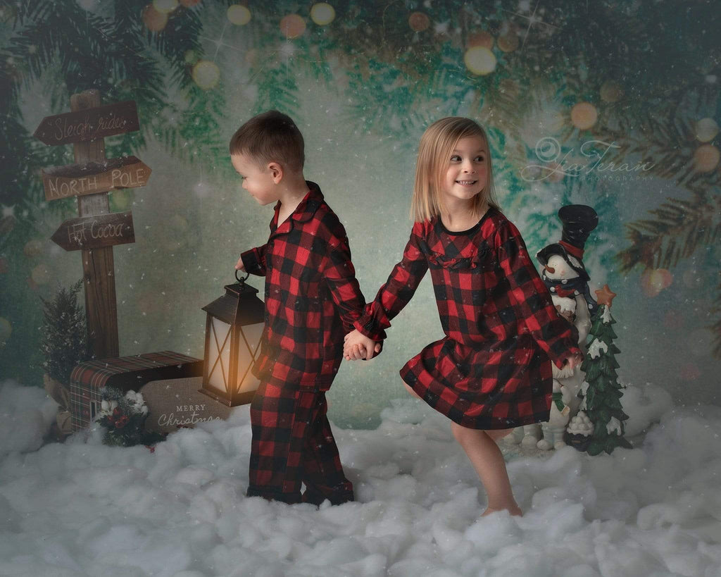 Katebackdrop:Kate Fantasy Christmas Pine tree branch winter Bokeh Backdrops for Photography