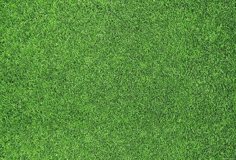 Katebackdrop:Kate Green Grassland Spring/Easter Rubber Mat Floor Drop