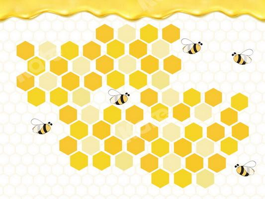 Kate Bee Honeycomb Honey Birthday Backdrop Designed By JS Photography