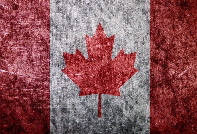 Katebackdrop:Kate Vintage Faded Flag Canada Day Backdrop for Photography