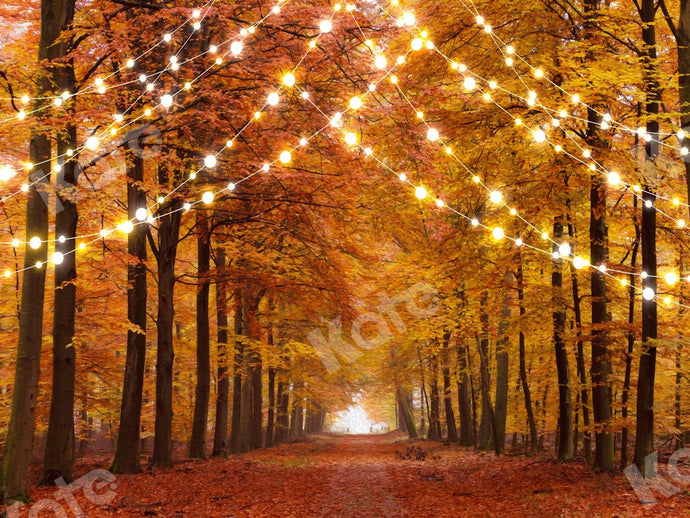 Kate Fall Backdrop Forest Road with Lights  for Photography