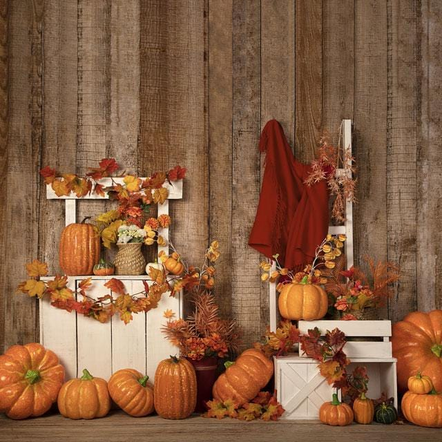 Kate Autumn/Thanksgiving Halloween Pumpkins Stand Backdrop Designed by Jia Chan Photography