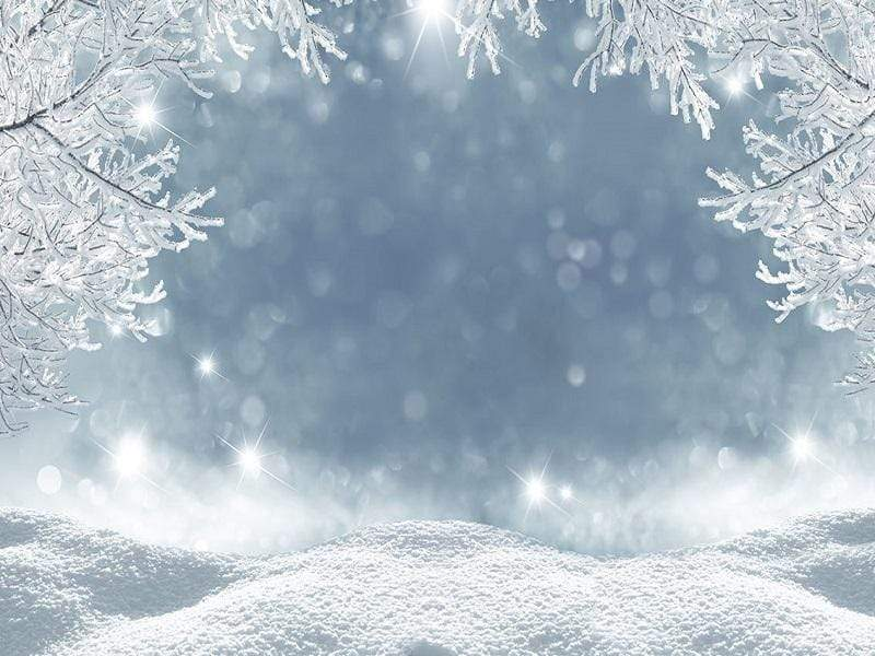 Katebackdrop:Kate Winter Wonderland Snow Freeze Backdrop photography studio