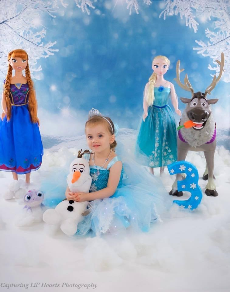 Katebackdrop£ºKate Winter Wonderland Snow Freeze Backdrop photography studio