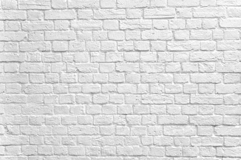 Kate Gray White Brick Wall Graduation Backdrop Studio