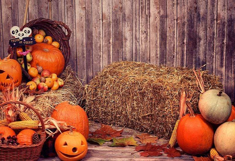 Load image into Gallery viewer, Katebackdrop£ºKate Halloween Fall Pumpkin Grass Pile Farm Backdrop Photography