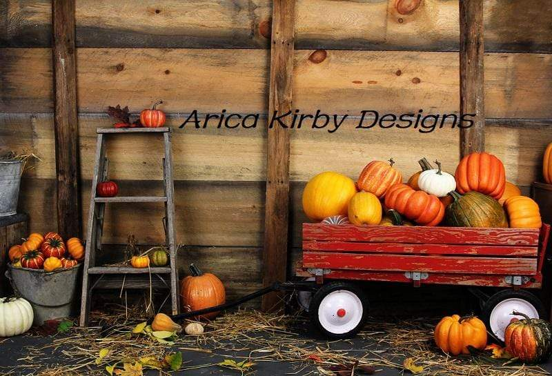 Load image into Gallery viewer, Katebackdrop£ºKate Pumpkin Harvest Backdrop Autumn and Halloween designed by Arica Kirby