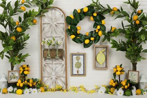 Kate Lemon Be Zesty Summer Backdrop for Photography