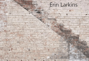 Katebackdrop:Kate Retro Brickstairs Backdrop for Photography Designed by Erin Larkins
